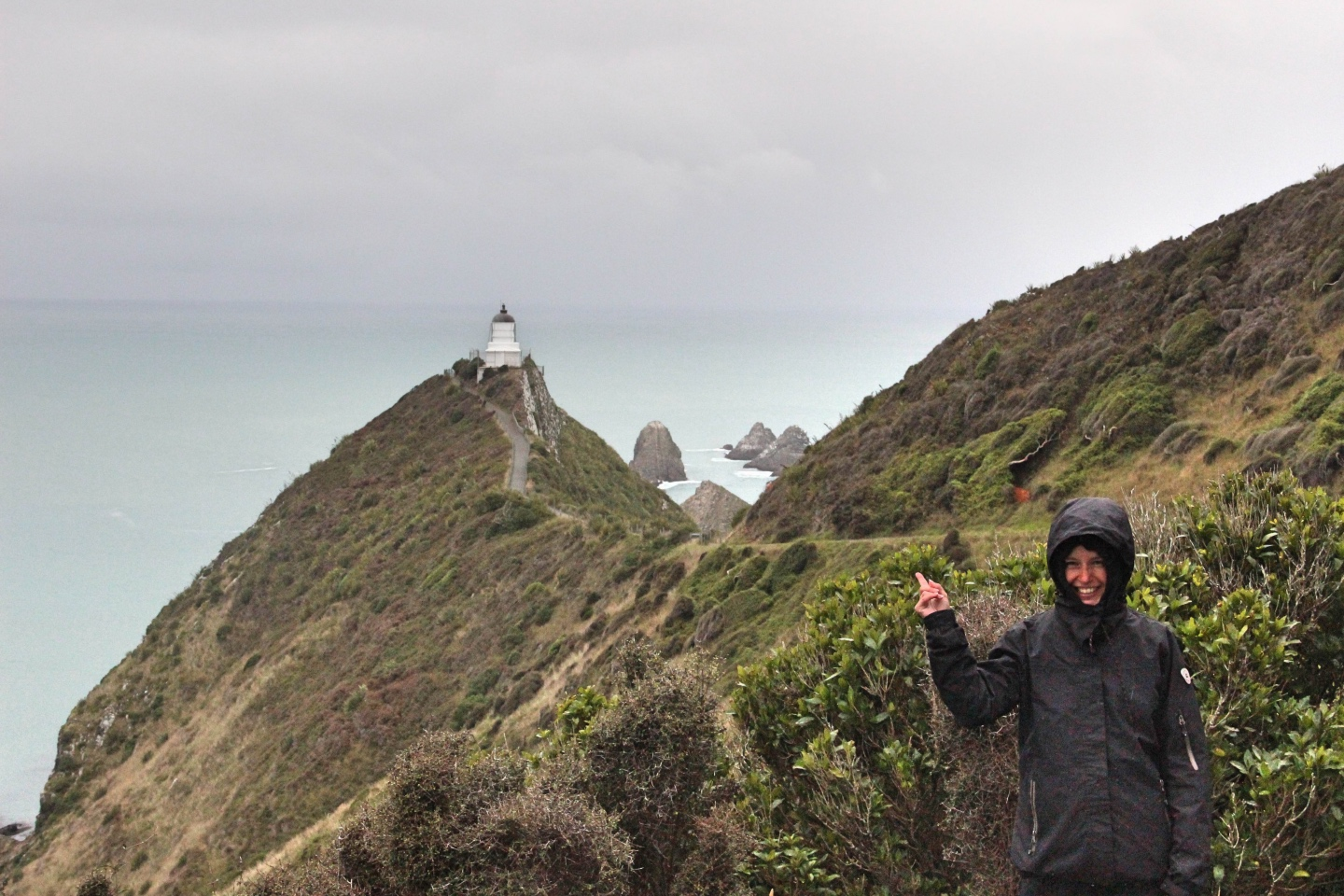 Weltreise_Backpacking_Neuseeland_Nugget_Point