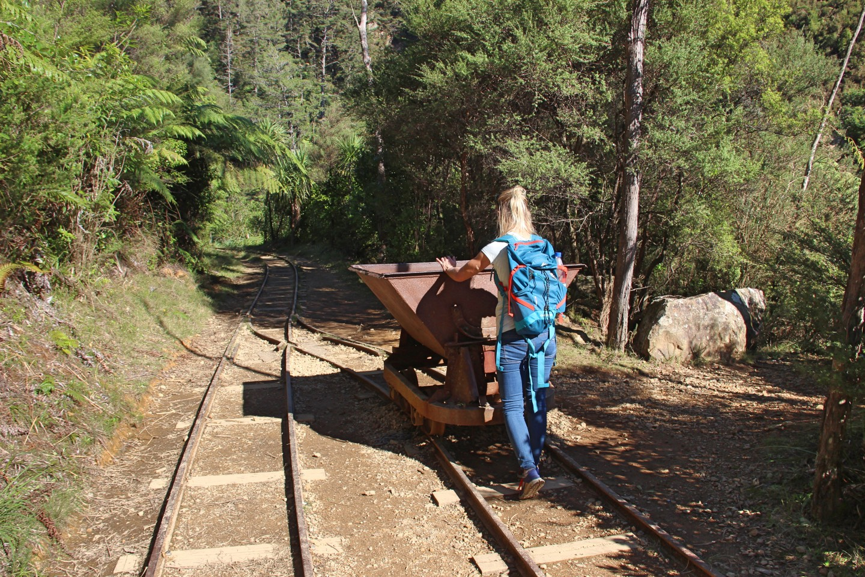 Weltreise_Backpacking_Neuseeland_Coromandel
