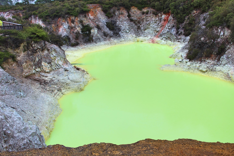 Weltreise_Backpacking_Neuseeland_Rotorua