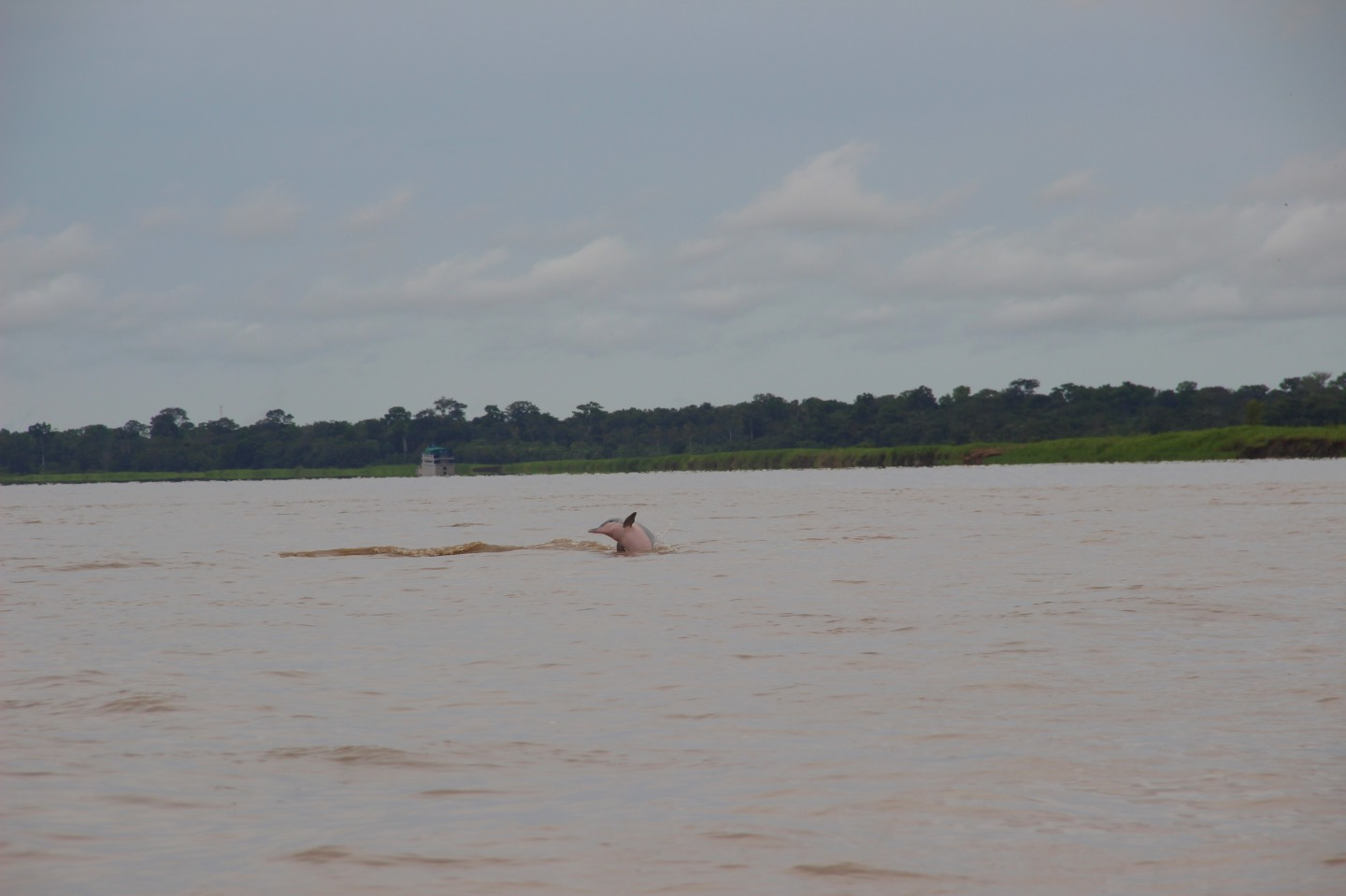 Weltreise_Backpacking_Kolumbien_Leticia_Amazonas